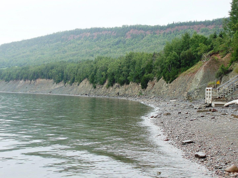 Cliff of the Miguasha National Park