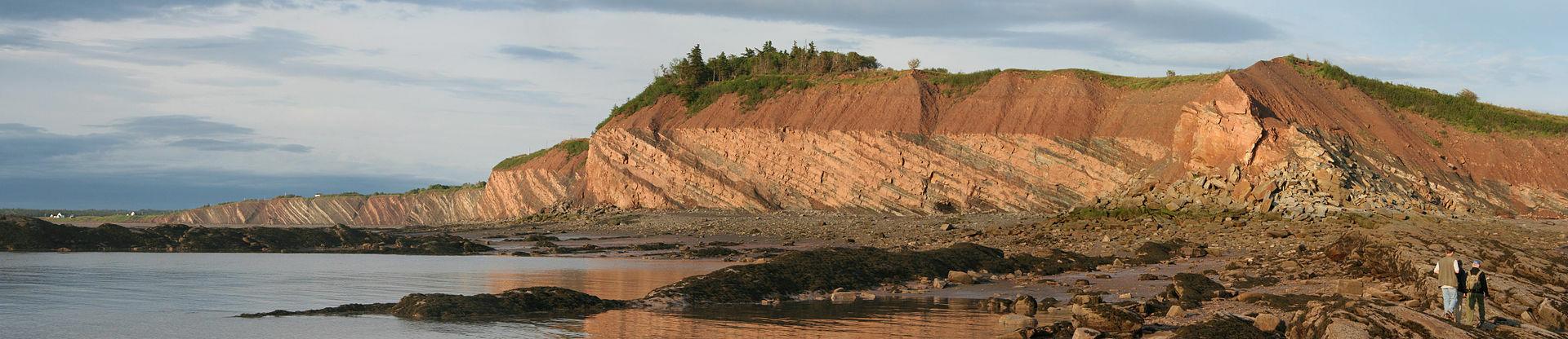 Joggins Formation, Nova Scotia