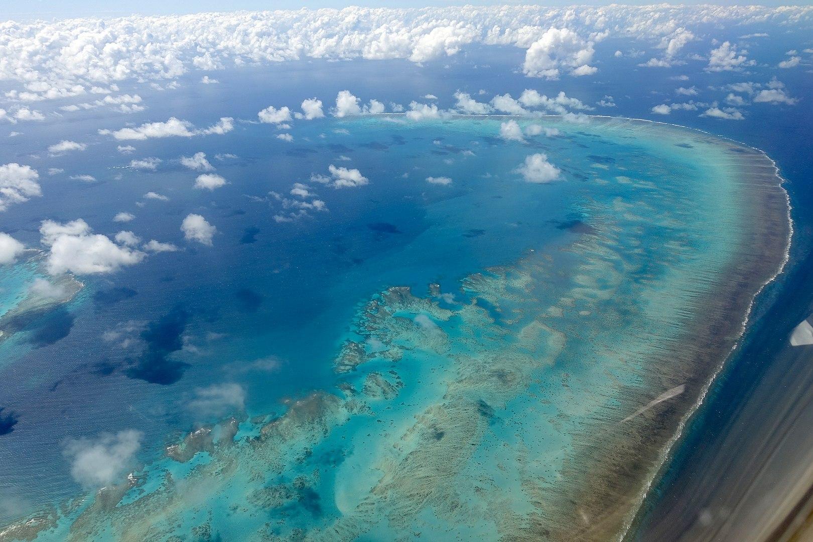 Aerial view of Arlington Reef